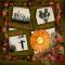 #7 - Rivendell - The Summer Harvest Hunt