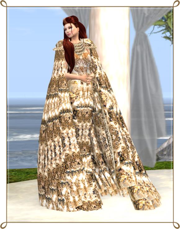 vm gown2_001 crf